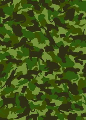 Animal camoflage